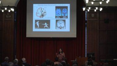 Clea Warburton: I know that face! How the brain recognises familiar stimuli