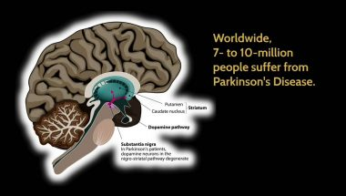 Aniruddh D. Patel: Rhythm and the Brain: Surprises from Cognitive Neuroscience