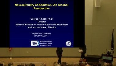 George Koob: Neurocircuitry of Addiction - An Alcohol Perspective