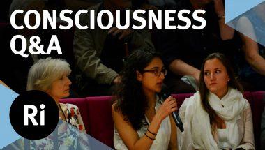 Anil Seth: The Neuroscience of Consciousness Q&A