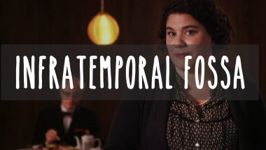 How we Taste: INFRAMTEMPORAL FOSSA