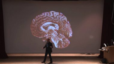 Bruce Hood: The domesticated brain: How the social environment turned us into children