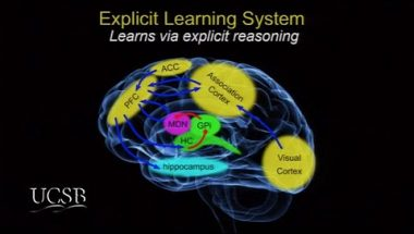 Greg Ashby: The Remarkable Learning Abilities of the Human Brain