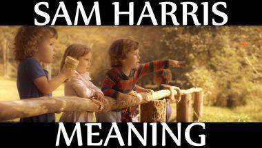 Sam Harris: Meaning