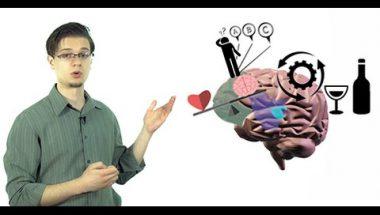 The Addicted Brain: Science of Addiction