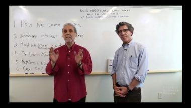 "Daniel Goleman and Richard Davidson: ""Does Mindfulness Really Work?"""