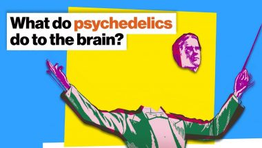 Michael Pollan: How psychedelics work: Fire the conductor, let the orchestra play