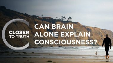 Can Brain Alone Explain Consciousness?